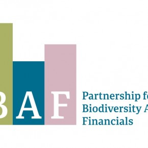 The Partnership for Biodiversity Accounting Financials (PBAF) welcomes fifteen new financial institutions